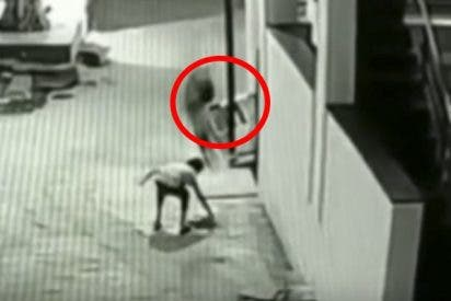 Este niño cae desde 12 metros y es amortiguado por su compañero