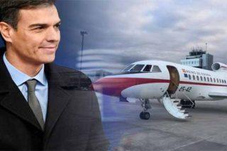 Socialismo caviar: el catering 'deluxe' de Sánchez y sus amigos a bordo del Falcon