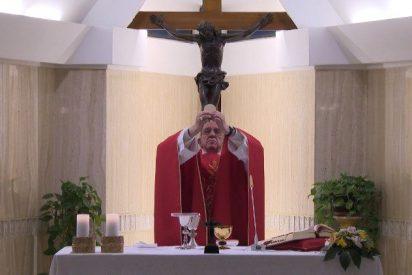 """Papa: el anuncio del Evangelio no es """"ni proselitismo ni marketing"""""""