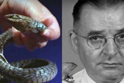 Karl P. Schmidt, el gran experto en serpientes que documentó 'por curiosidad' su muerte tras ser mordido por una