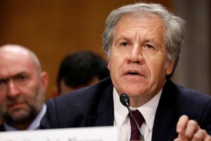 Luis Almagro, reelegido para liderar a la OEA hasta 2025