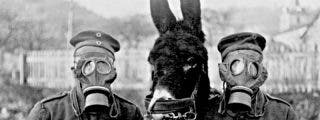 Cocaína, opio y morfina: así se usaron las drogas en las grandes guerras del siglo XX