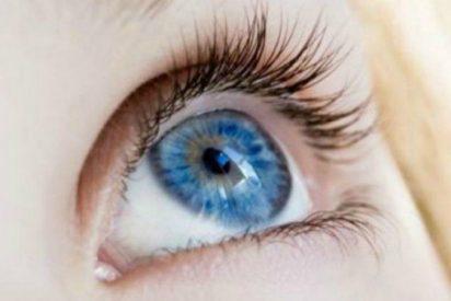 Consiguen devolver la vista con un editor genético de ADN
