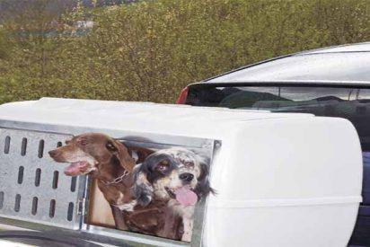 La Guardia Civil detiene a un cazador por llevar a su suegra en el remolque con los perros