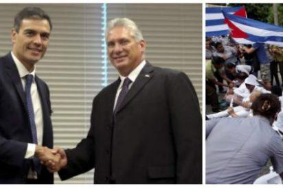 Escupitajo de El País a la oposición cubana elogiando que Pedro Sánchez no se reúna con ellos