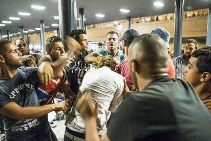 La salvaje manada de 15 magrebíes con sarna que han atacado sexualmente a una joven en Cataluña