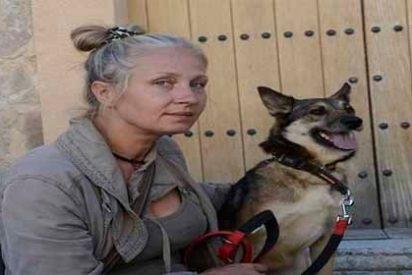 Un Zoofílico violó a su perro, murió por una infección en el pene y encendió las alarmas de una sociedad enferma