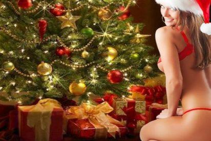¿Sabes dónde nace la costumbre del árbol de Navidad?