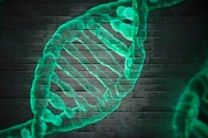 Regala a su familia una prueba de ADN y casi arruina su Navidad