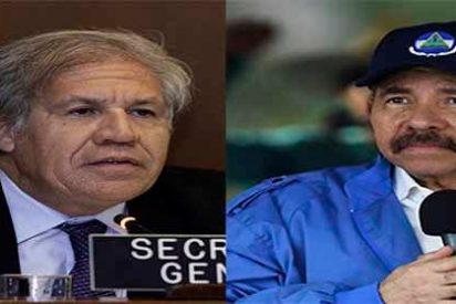 """Secretario General de la OEA pide aplicar """"mano dura"""" a la dictadura en Nicaragua"""