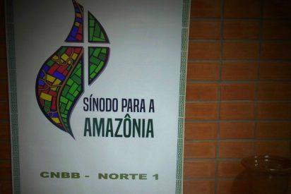 """Asamblea Presinodal en Manaos: """"Soñamos con una Iglesia osada, dialogal, inclusiva, pobre y solidaria"""""""