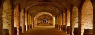 Madrid aumenta un 120% las ayudas para promocionar sus vinos