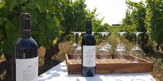 Pontac 2014, un homenaje a Château Haut-Brion Arnaud de Pontac, el visionario de los grandes vinos