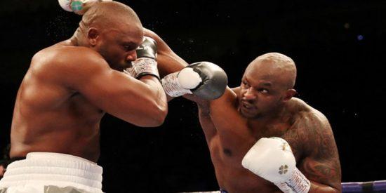 Este boxeador gana una pelea por nocaut y reta al campeón de los pesos pesados con un agudo mensaje