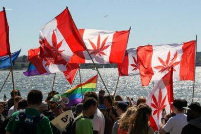 """Los obispos canadienses ven """"inmoral"""" el uso no medicinal de la marihuana"""