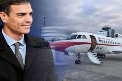 Bodas, conciertos y vacaciones: el 'okupa' Sánchez se ha gastado ya 61.100 € en sus 'viajes de Estado'