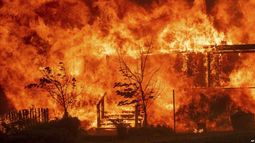 El dentista forense Jim Wood vio a los ojos al terror y la muerte de los incendios en California