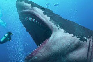 El temido Megalodón desarrolló sus dientes por hacerse enorme