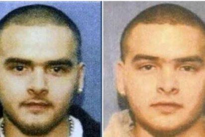 Quiénes son los mellizos Flores que traicionaron a 'El Chapo' Guzmán: