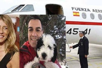 El socialista Sánchez se ha saltado las normas de aviación al viajar en el Falcon con su perra