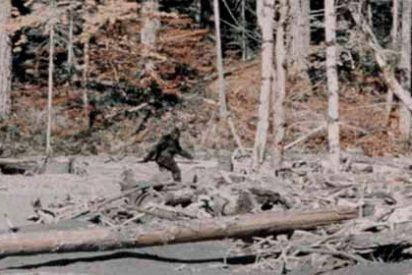 ¡Insólito! Salió a cazar, lo confundieron con Pie Grande y le dispararon a quemarropa