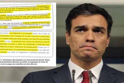 El Gobierno Sánchez mintió al anunciar el test antiplagio de la tesis para tapar a 'Doctor Plagio'