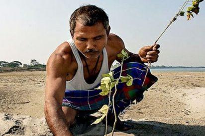 Hace casi 40 años, un chico de 16 años comenzó a plantar un árbol diariamente en una isla perdida, y ahora este es el resultado