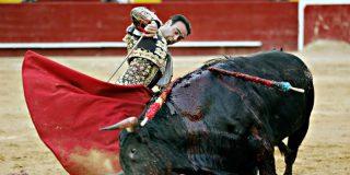 El Gobierno Sánchez rectifica de nuevo: ahora dice que no prohibirá los toros