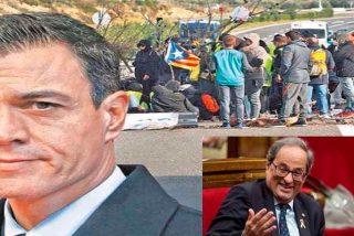 El 'okupa' Sánchez persevera en el error y se humilla ante el xenófobo Torra para que le reciba