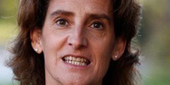 """Carta abierta de los cazadores a Teresa Ribera: """"Querida, irresponsable e ignorante ministra"""""""