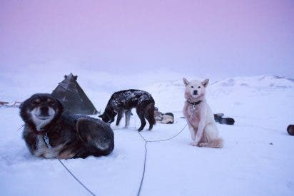 PANGEA y Eltiempo.es continúan su colaboración con un nuevo viaje de autor a Svalbard