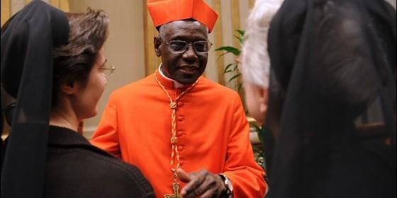 """Cardenal Sarah: """"¿Cuántos muertos hacen falta para que Europa entienda la situación de Occidente?"""" El-cardenal-sarah"""