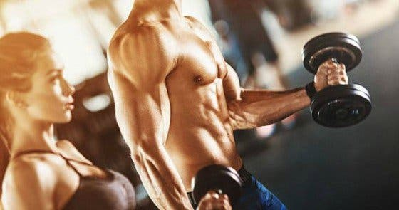 proteínas para la musculatura