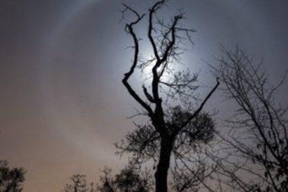 ¿Sabes por qué apareció este anillo alrededor de la Luna?