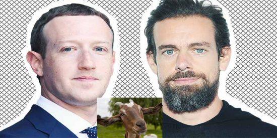 Y Zuckerberg mató la cabra de Facebook para dar de cenar a Jack Dorsey, el jefe de Twitter