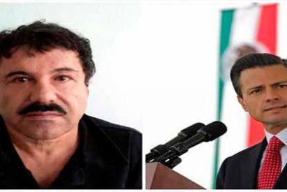 """Un testigo asegura que Peña Nieto recibió un soborno de US$100 millones de """"El Chapo"""" Gúzman"""