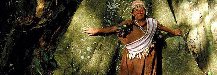 Organizaciones indígenas e Iglesia buscan aliarse por la Amazonía