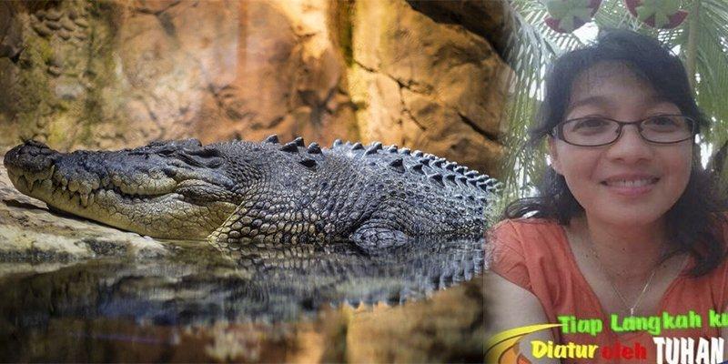 Un enorme cocodrilo salta más de dos metros y devora viva a esta científica que le daba de comer