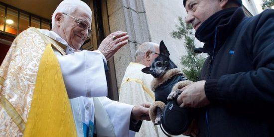 La iglesia de San Antón de Madrid honra a su titular con la tradicional venta de panecillos y bendición de animales