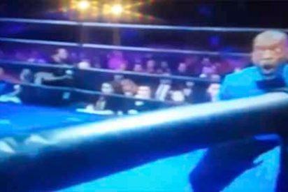 Steve Willis o las reacciones virales de un arbritro mientras un boxeador masacra a su rival