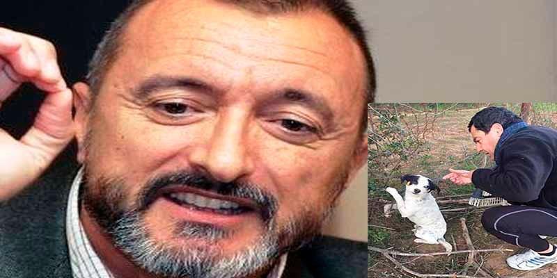 Juanma Moreno publica un tuit sobre un perro maltratado y Pérez-Reverte le da un consejo