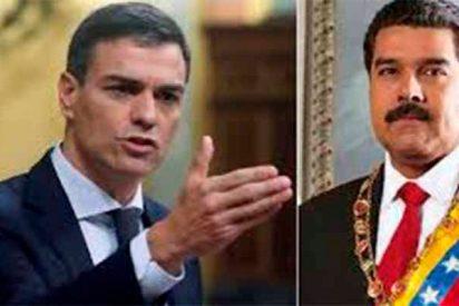 """Venezuela: """"Era muy fácil"""" la columna de Luis Ventoso para dejar al desnudo la cobardía de Pedro Sánchez"""