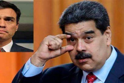 El socialista Sánchez da 8 días más al dictador Maduro para que no se enfade Podemos