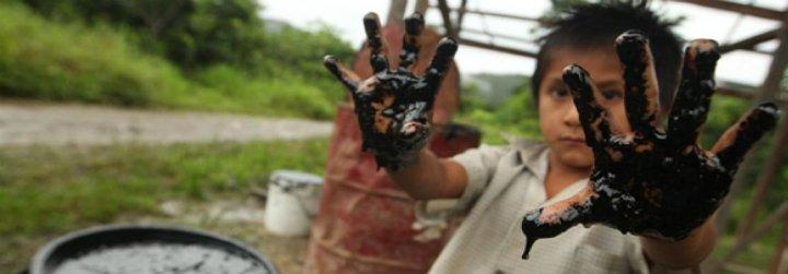 """La REPAM denuncia los """"devastadores impactos"""" del saqueo de la Amazonía"""