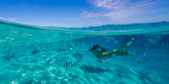 Dónde bucear con esnorkel