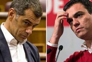 Toni Cantó difunde un vídeo de Ciudadanos que atiza con tino a la última sinvergonzonería del Presidente Sánchez