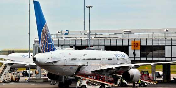 Desalojan a una mujer de un avión por llamar cerdos a dos pasajeros
