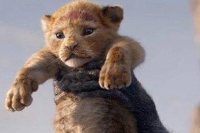 Disney estrena nuevo tráiler de 'EL REY LEÓN' y ya no podemos esperar más para ver la peli