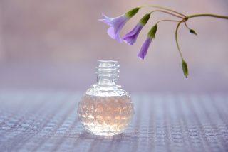 Perfumes: los mejores empolvados