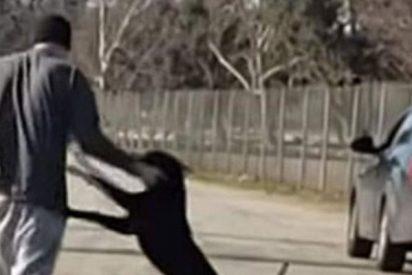 Este tipejo abandonó a su perro de la forma más cruel y ahora la policía le busca